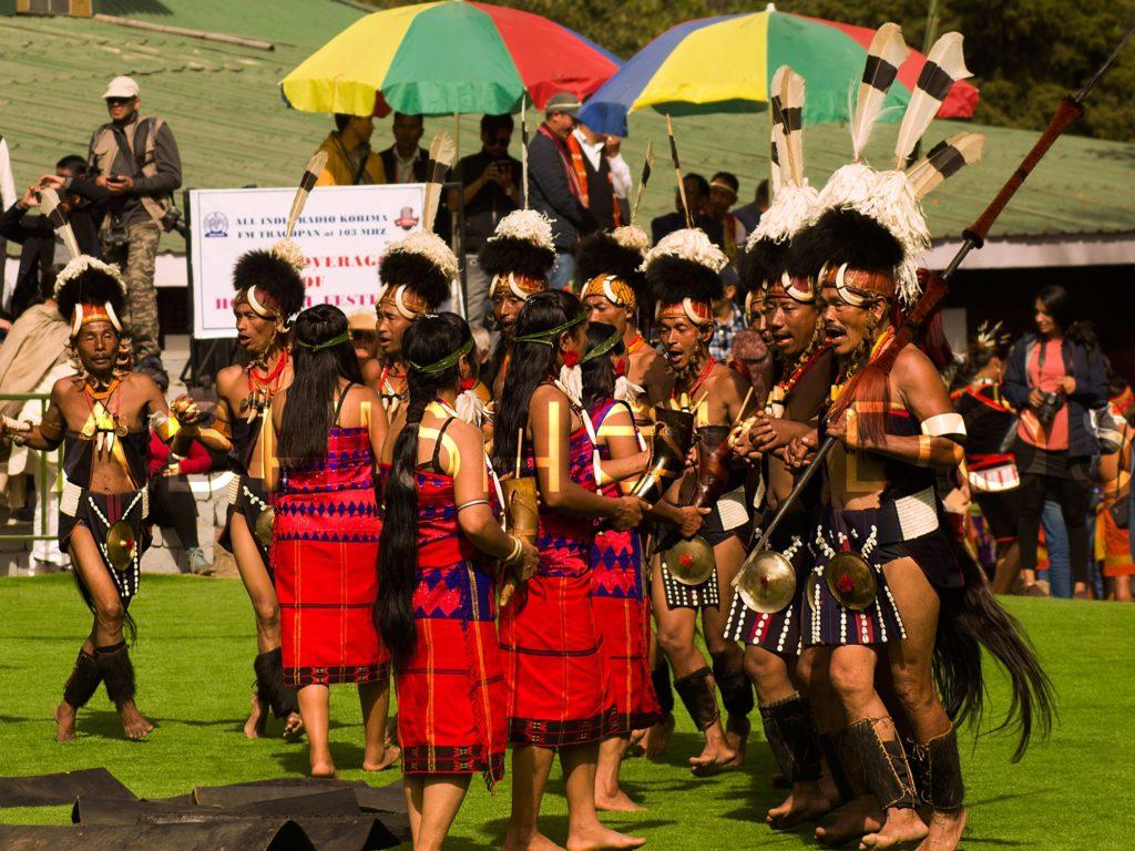 Hornbill festival is organized every year by Nagaland