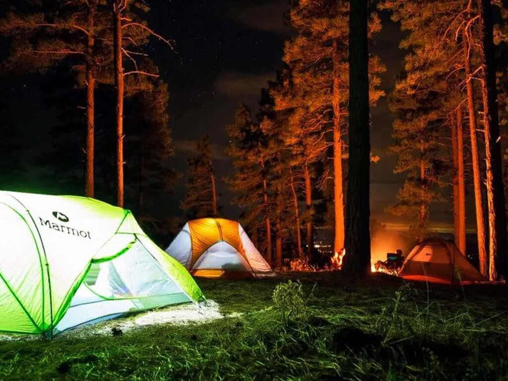 Camping – Coorg
